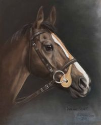 KAUTO STAR by Josephine Guilfoyle at Ross's Auctions