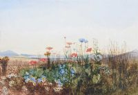 WILD FLOWERS WITH DISTANT MOUNTAINS by Andrew Nicholl RHA at Ross's Auctions