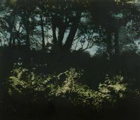 LAMORA GLADE by Alyson Stoneman at Ross's Auctions