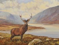 STAG OVERLOOKING GLENVEAGH by Nigel Allison at Ross's Auctions
