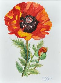 POPPY by Patricia Henry at Ross's Auctions