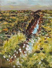 BOG NEAR CARNDONAGH, DONEGAL by Patric Stevenson PPRUA at Ross's Auctions