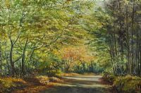 TOLLYMORE FOREST, AUTUMN by Allan Ardies at Ross's Auctions