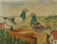 TWO PIGEONS by German School at Ross's Auctions