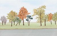 PARKLAND by Sandra Fair at Ross's Auctions