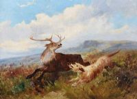 TERRIER & STAG by J. Howard at Ross's Auctions