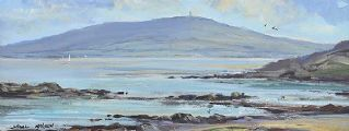 ACROSS STRANGFORD by Nigel Allison at Ross's Auctions