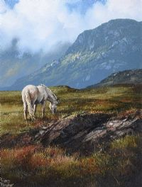 PONY ON ROUNDSTONE BOG, CONNEMARA by Eileen Meagher at Ross's Auctions