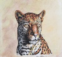 LEOPARD by Chris Stephens at Ross's Auctions