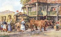 THE GRAPE HARVEST by Eric R. Sturgeon at Ross's Auctions