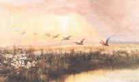 DUCKS OVER WETLANDS by Andrew Nicholl RHA at Ross's Auctions