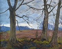 TREES NEAR BELVOIR PARK, BELFAST by Hans Iten RUA at Ross's Auctions