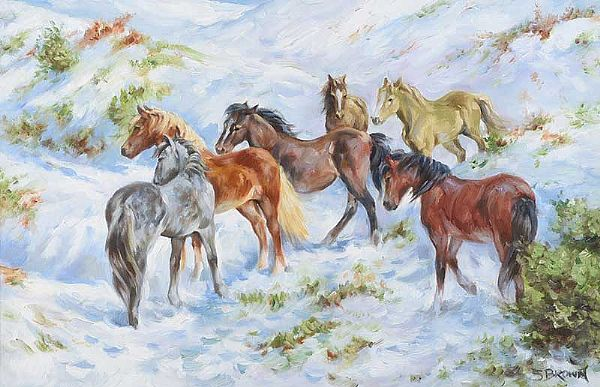 WILD HORSES IN THE WINTER by Stephen Brown at Ross's Online Art Auctions