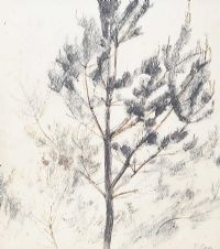 TREE STUDY by Tom Carr HRHA RUA RWS at Ross's Auctions