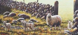 SPRING LAMBS by Keith Glasgow at Ross's Auctions