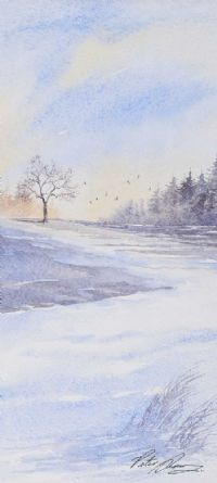 WINTER LANDSCAPE by Peter Shaw at Ross's Auctions