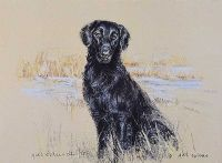 WORKING RETRIEVER by Gill Evans at Ross's Auctions