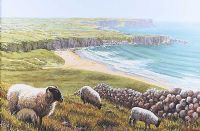 SHEEP OVER WHITEPARK BAY by Keith Glasgow at Ross's Auctions