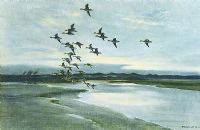 WIDGEON OVER THE DUNES by Peter Scott at Ross's Auctions