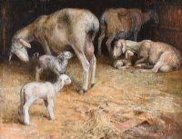 SHEEP & LAMBS IN A BARN by Anne Shingleton at Ross's Auctions