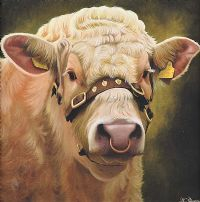 SHOW BULL by Keith Glasgow at Ross's Auctions