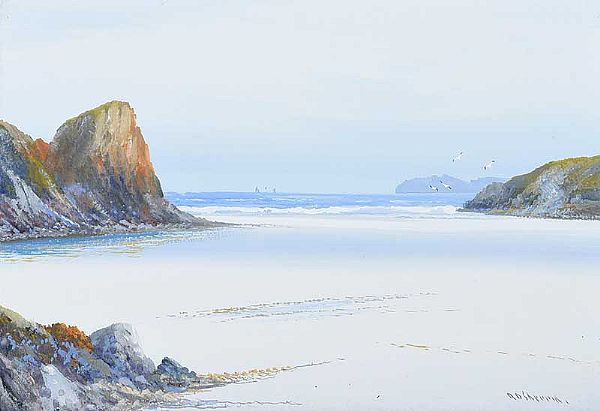 LOW TIDE, BUDE, CORNWALL by R. Daniel Sherrin at Ross's Online Art Auctions