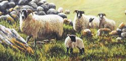 SHEEP GRAZING by Keith Glasgow at Ross's Auctions