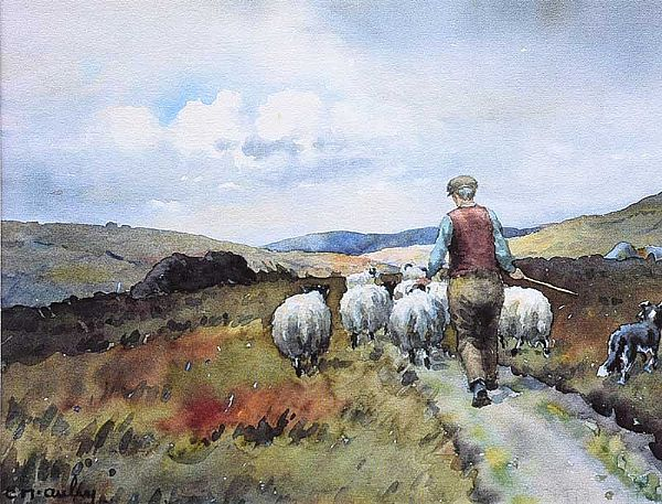 DRIVING SHEEP by Charles McAuley at Ross's Online Art Auctions