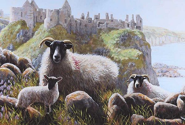 SHEEP AT DUNLUCE CASTLE by Keith Glasgow at Ross's Online Art Auctions