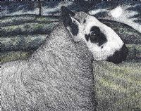 KERRY HILL RAM by Seren Bell at Ross's Auctions