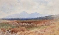 SLIEVE DONARD, COUNTY DOWN by Joseph William  Carey RUA at Ross's Auctions
