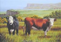 CATTLE GRAZING ON THE ANTRIM COAST by Keith Glasgow at Ross's Auctions